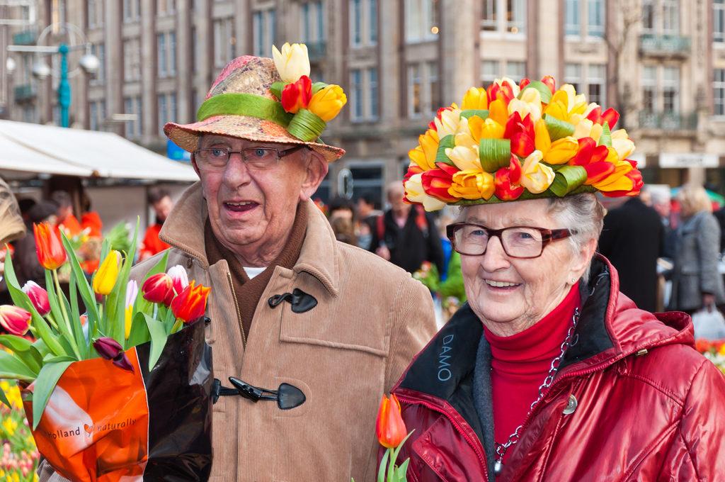 Природа и цветы Европы. Тюльпаномания