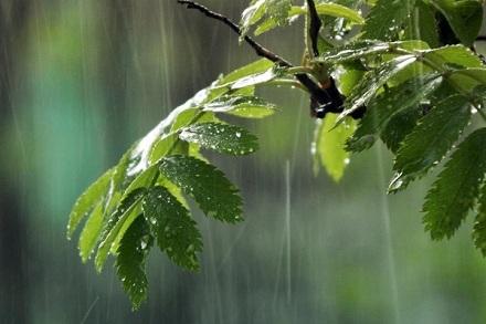 Выходные на Винниччине похолодает и будет дождливо — Ю.Власов