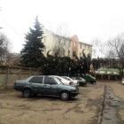 Повалена елка возле суда и столб на Милицейской. Винничане публикуют фото последствий штормового ветра