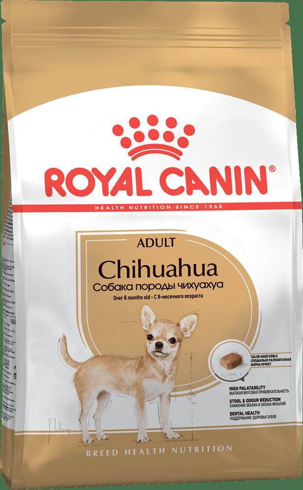 Какой выбрать корм для чихуахуа